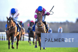 Palmerbet Review: Our Opinion Of Bonuses, Odds, App